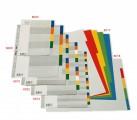 BANTEX 6003 A5 膠質顏色索引分類(5級)
