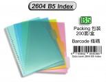 DATA BANK 2604 B5 26孔膠質顏色索引分類(4級)