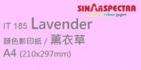 Sinar Spectra A4 80g 顏色影印紙 / 薰衣草 / 185