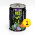 天然 耶子汁 250ml x1罐 #4291