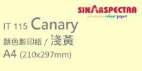Sinar Spectra A4 80g 顏色影印紙 / 淺黃 / 115