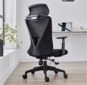(15) 人體工學椅護腰電腦椅