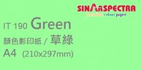 Sinar Spectra A4 80g 顏色影印紙 / 草綠 / 190